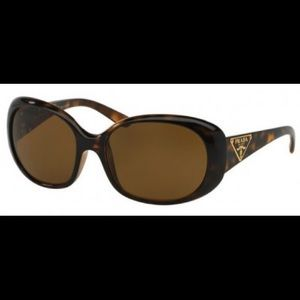 Prada HAVANA POLAR BROWN Sunglasses